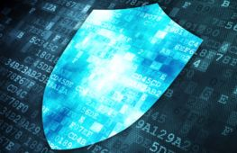 Growing corporate data security company - investment opportunity